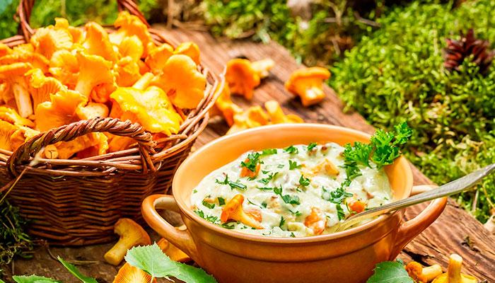 Суп из лисичек — финский деликатес