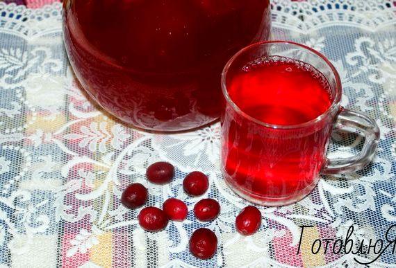 Клюквенный морс рецепт из замороженных ягод