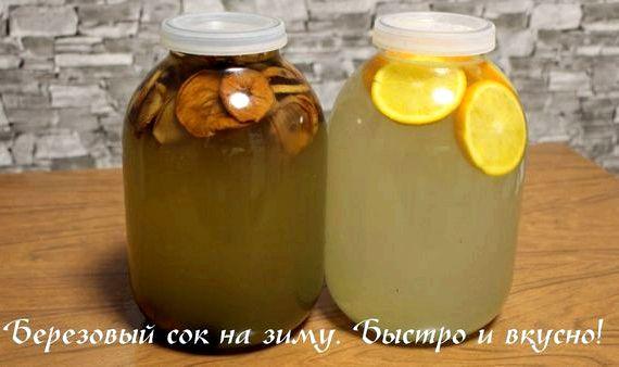 Консервирование березового сока в домашних условиях рецепт