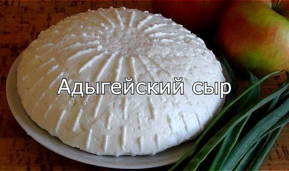 Рецепт адыгейского сыра в домашних условиях из молока