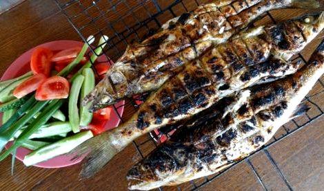 Рыба на костре на решетке рецепт с фото примеру, отличный результат можно получить