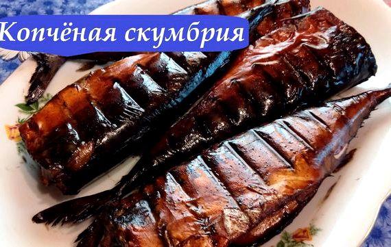 рецепты горячего копчения рыбы бывалых рыбаков