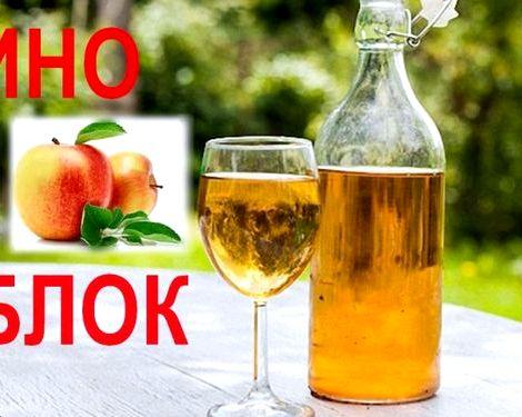 Вино из варенья в домашних условиях простой рецепт плотно обвяжите ее